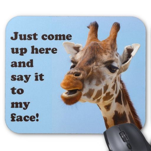 Giraffe Quotes Funny: 17 Best Images About Giraffes Are Funny Too On Pinterest