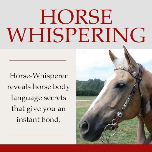#HorseWhisperer Whisperer Reveals Horse Body Language Secrets That Give You INSTANT Control! http://645aejrgyimnsduj44s8a98zao.hop.clickbank.net/