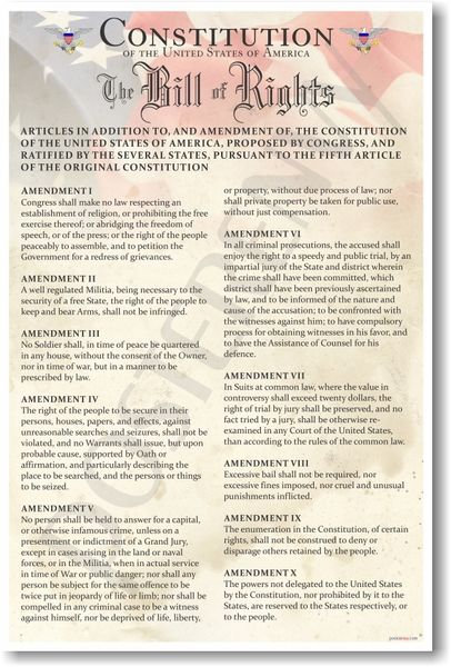 PosterEnvy - Constitution of the United States - The Bill of Rights - Classroom Poster (ss108)