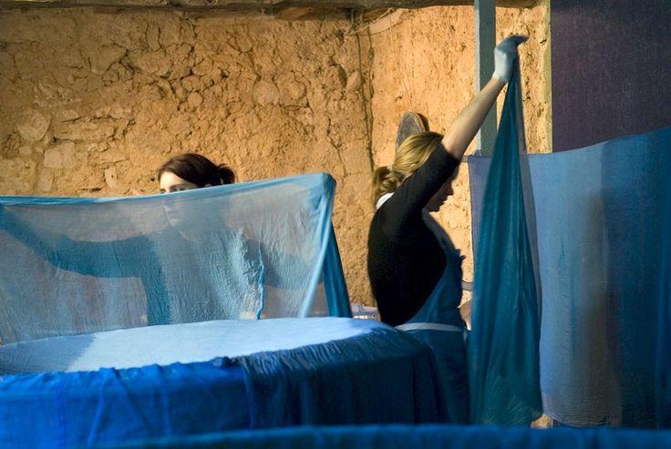L'Atelier du #Bleu de #Lectoure, fait à partir du #pastel... L'atelier du Bleu…