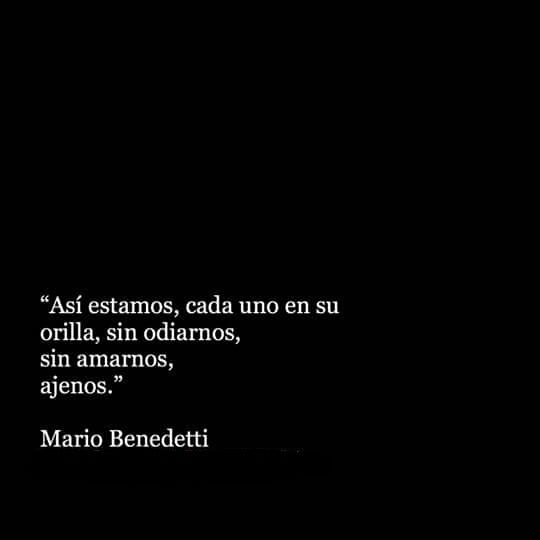 Messed Up Life Quotes: 1809 Best De Poetas Y Locos... Images On Pinterest