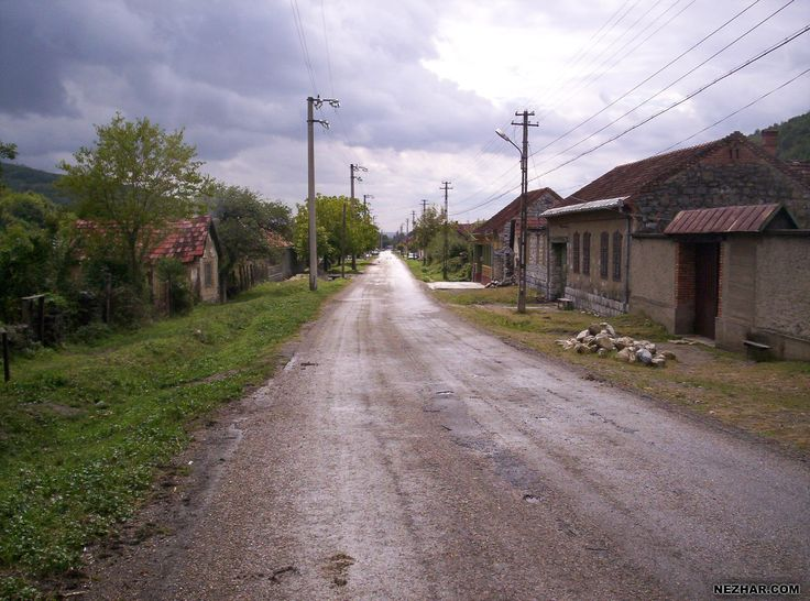 Te long Road (from Nezbeda Harald's Photos)