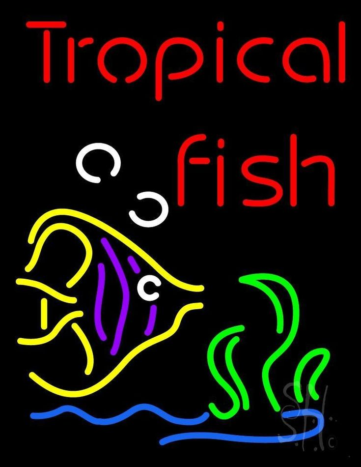 """Tropical Fish with Logo Neon Sign 31"""" Tall x 24"""" Wide x 3 ... - photo#19"""