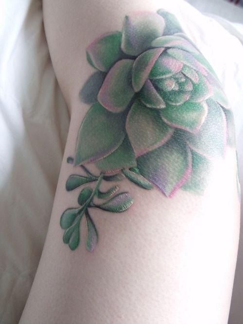 tattoo succulent - Google Search