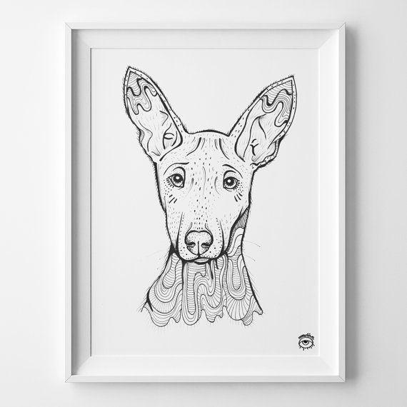 Pharaoh Hound Dog A4 illustration print art dog print by mmuffn