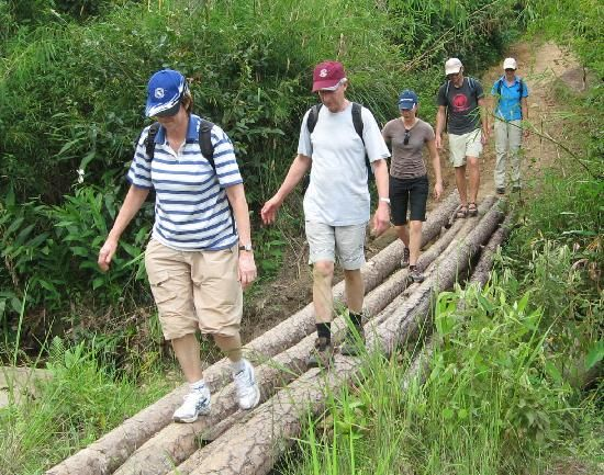 Cat Tien National Park an ecotourism paradise in #Vietnam