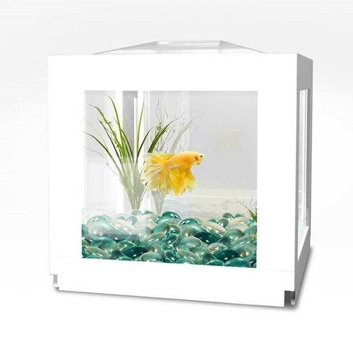 1000 ideas about fish tank table on pinterest coffee for Fish tank desk