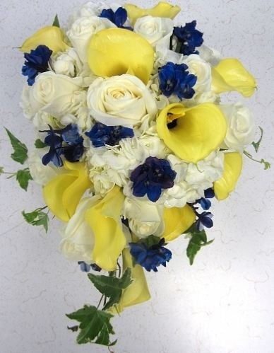 yellow, blue, and white