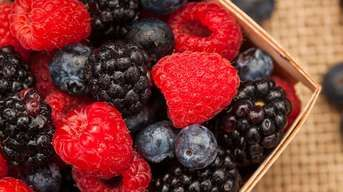 Ako pestovať drobné ovocie? Náš praktický prehľad vám pomôže