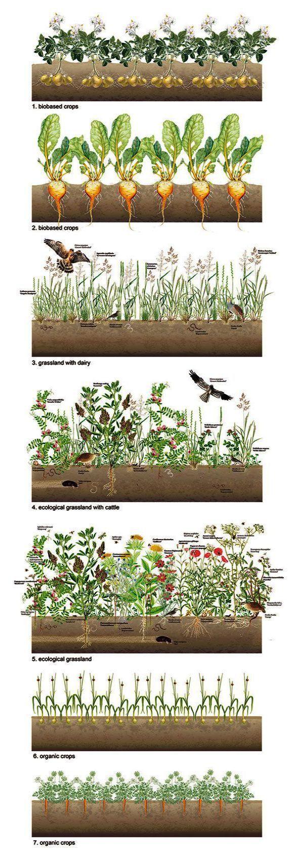 Landscape Gardening Work Erleben Sie eine Msr Landscape Gardening Llc in …, #Experi …