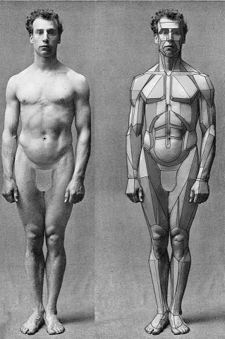 Cool breakdown of the body