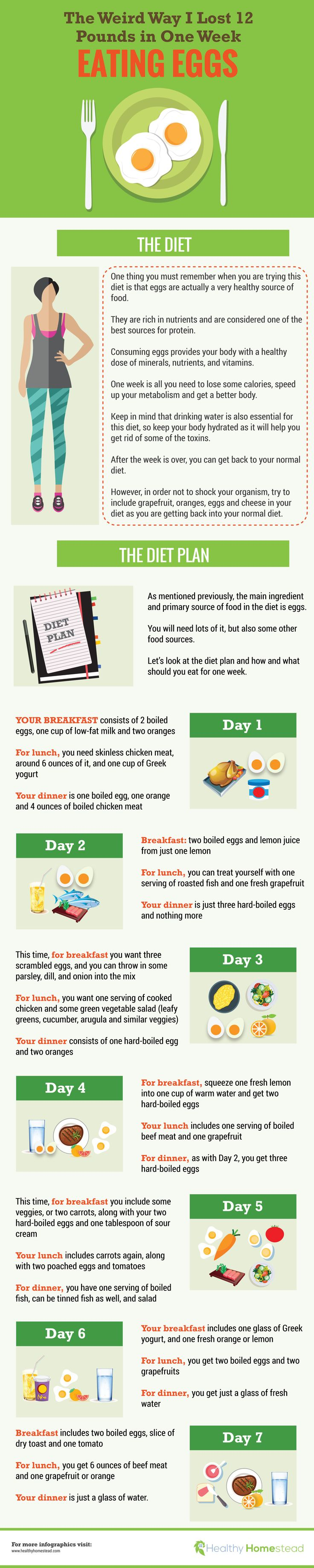 Egg diet for 7 days