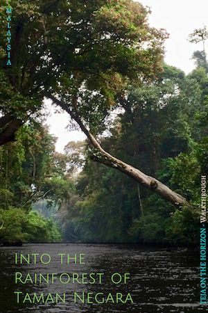 Into the Beautiful Fey Rainforest - Taman Negara, Malaysia | Taman Negara National Park | Malaysian rainforest | tour upriver Sungai Tahan | berkelah ke Lata Berkoh | cuti-cuti Malaysia | Malaysia tourism | oldest rainforest | Teja on the Horizon blog