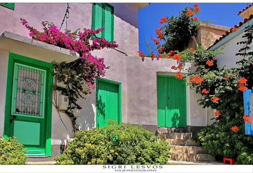 Sigri - Lesvos (Mytilini), Greece Dreaming of Spring already….