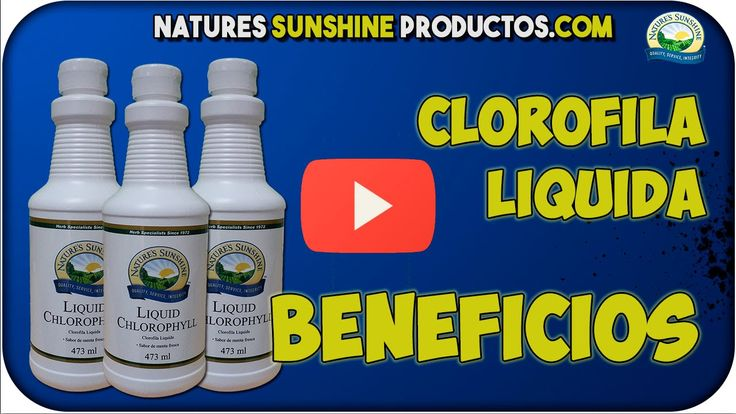 Clorofila Liquida BENEFICIOS - Natures Sunshine