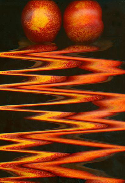 Diane Kaye - scannography - ScanArt - scanography - Scanner Art