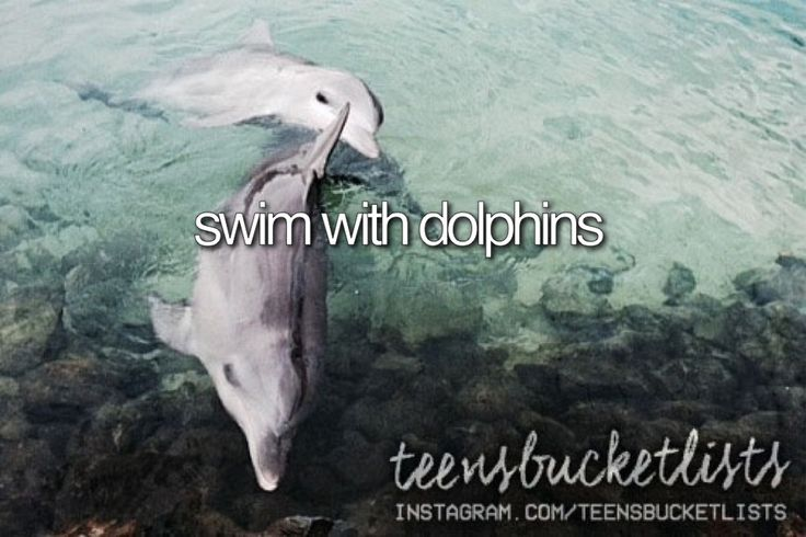 Omg bucket list goals and also wanna do this for my job but at like sea world or something lol