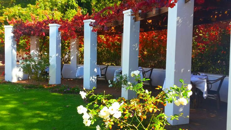 Stunning spot for a relaxing #winelands lunch at #hartenberg in the Stellenbosch Wine Route.