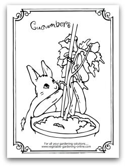 97 best Kids 39 Printable Garden Worksheets Coloring Pages