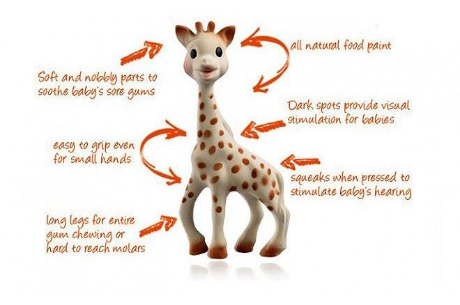 Sophie Le Giraffe is a must! She is a 100% natural rubber teething toy which babies love to suck, chew, hold and squeak. Mr TT was given one of these when he was born and at age 2 he still like to play with and gnaw on Sophie occasionally!