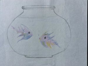 fish in bowl.jpg