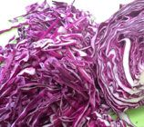 Easy Pickled Red Cabbage Recipe| Sarah James | http://www.talesfromthekitchenshed.com