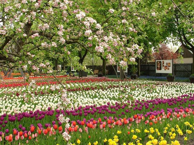 Britzer Garten (2) by visitBerlin, via Flickr © Grün Berlin More information on #Berlin: visitBerlin.com