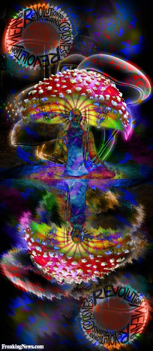 Shrooms Psychedelic Art Pictures - Strange Pics - Freaking News