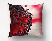 Red Anemone Flower Pillow, Floral decor, Throw Pillow Sofa, Macro Photography