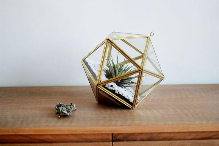 Icosaedro - Comprar en Herbario