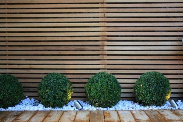 immergrüne Pflanzen Holzzaun Kieselweg
