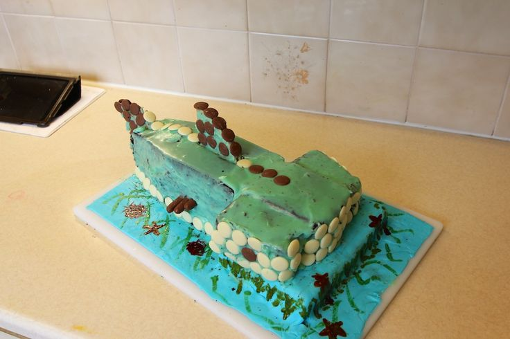 Hammerhead Shark Cake - Chocolate cake with white chocolate ganache. With hindsight I would have used butter icing for the covering.