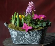 Aranjament vas tabla 26cm  Flori mix primavara in ghivece (se pastreaza o perioada indelungata)    60 lei + TVA, CorporateBaskets.ro