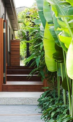 Side of house thoroughfare ideas