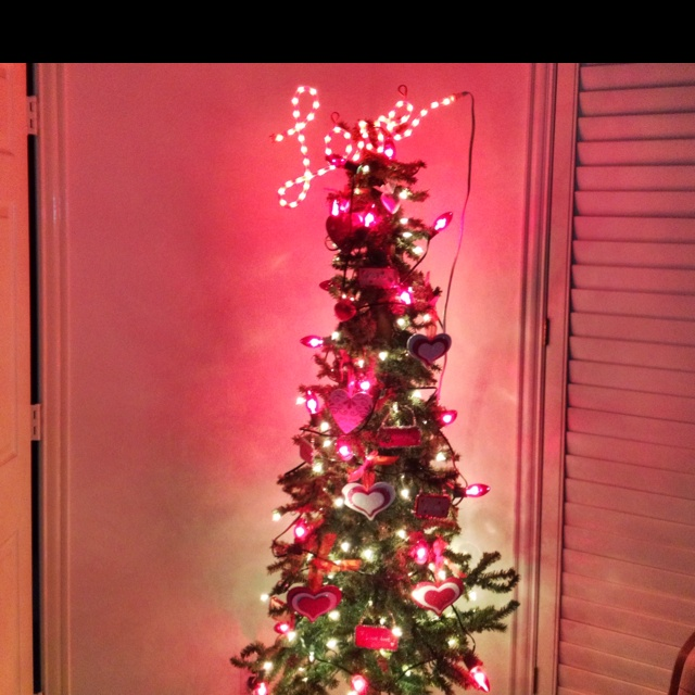 Day To Put Up Christmas Tree