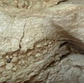 Un grupo de arqueólogos ha localizado en Nazaret una casa del siglo I considerada como el lugar en el que se crió Jesús.  La evidencia principal que relaciona el lugar con Jesús, se encuentra en un texto llamado 'De locis sanctis' (Sobre Lugares Santos) escrito en 670 por el abad Adomnán de Iona.  La casa contaba con varias habitaciones y una escalera pegada a uno de los muros. Algunos de estos fueron construidos con mortero y piedra y otros excavados en roca caliza. En el interior se…