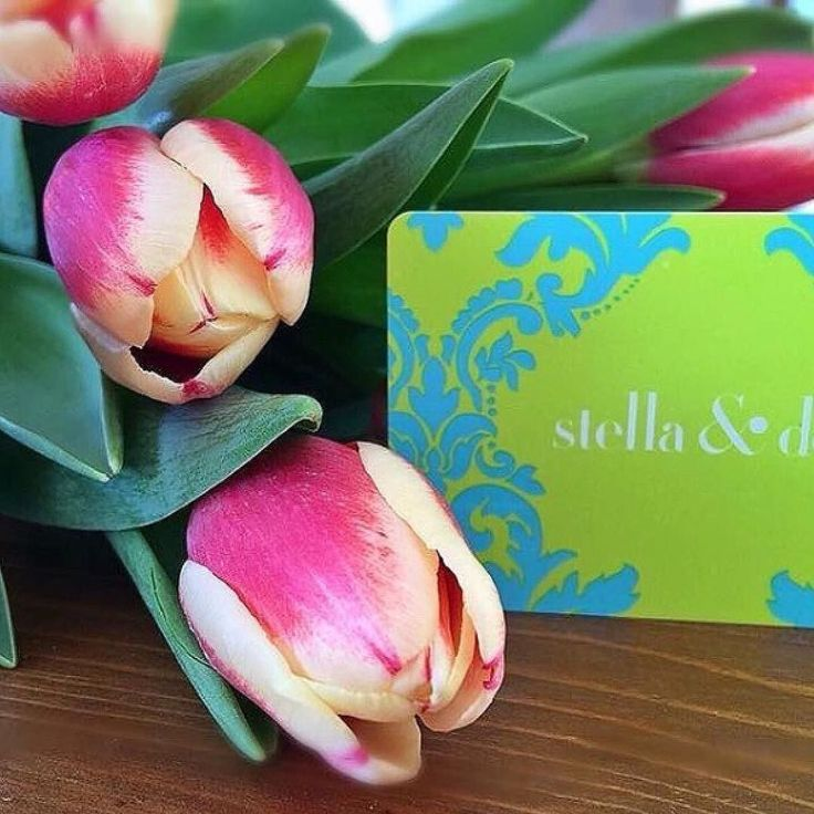 Spring blooms please and thank you  : @kkenagy94 http://www.stelladot.com/angiehurlburt