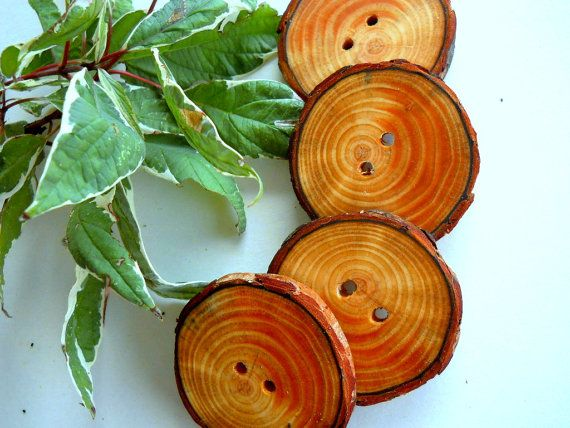 Wooden+Buttons++4+Michigan+Red+Pine+Tree+Branch+by+TheHickoryTree,+$8.50