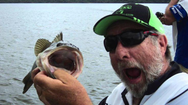 """Rob Fisher """"I Read Bass Digest & I Love It!"""""""
