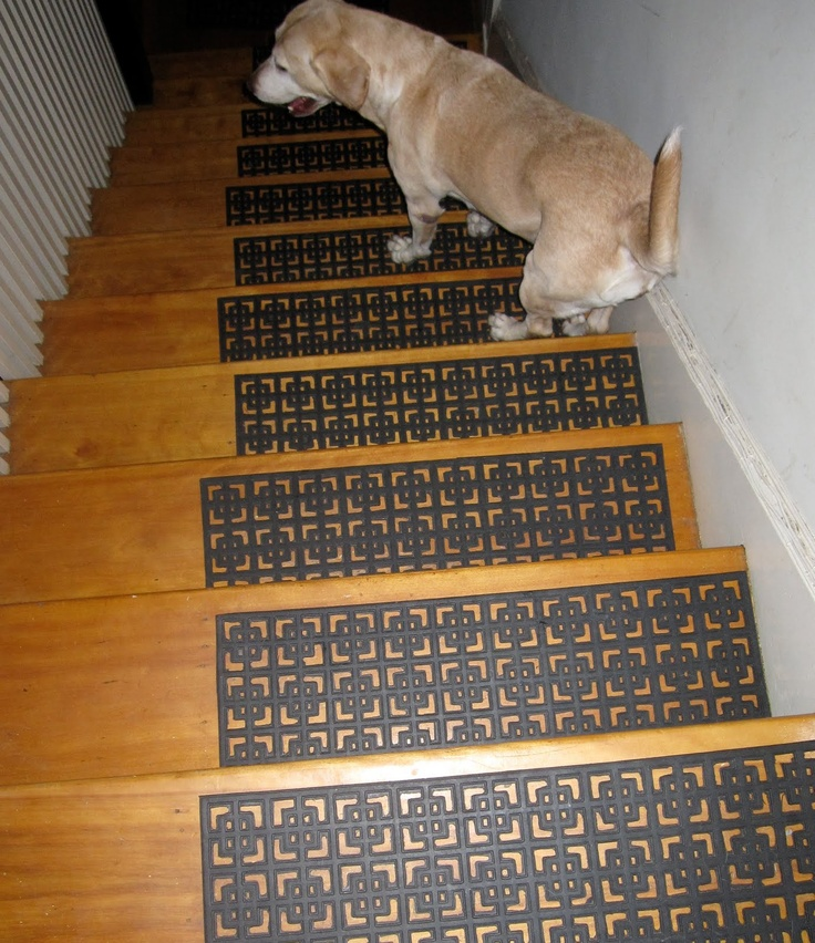 The Orange Dog Blog: Most Excellent Stair Treads For Long Legged Dogs