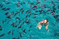 Bay of Sosua Catamaran Cruise and Snorkeling-Puerto Plata-Dominican Republic-Catamaran Cruises