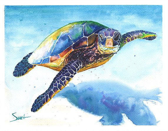 Sea turtle watercolor painting sea turtle decor by SignedSweet, $17.00