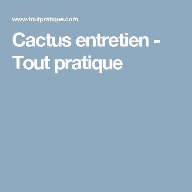 Cactus entretien - Tout pratique