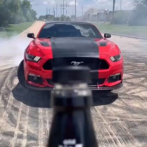 Ford Mustang   – ° cars / motors