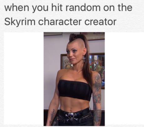 When you hit random on the skyrim character creator.