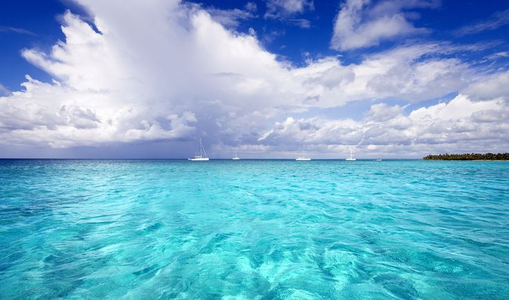 cheap airline tickets to montego bay jamaica