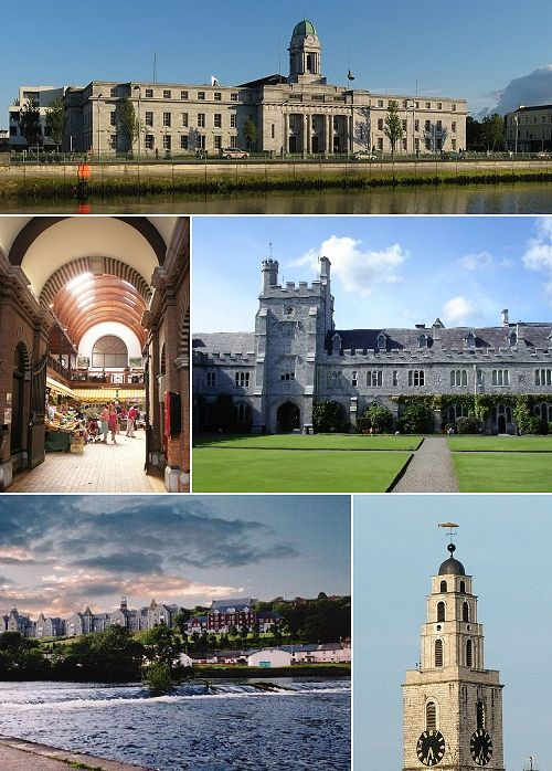 University College Cork Genealogy Summer School - I want to do this!!!