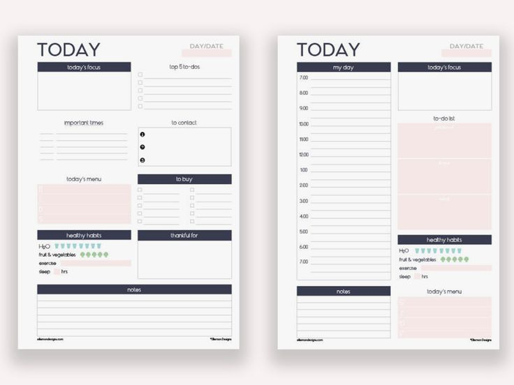 2 Daily Planner Printables -- GOOD ORGANIZATION-- (By EllemonDesigns)