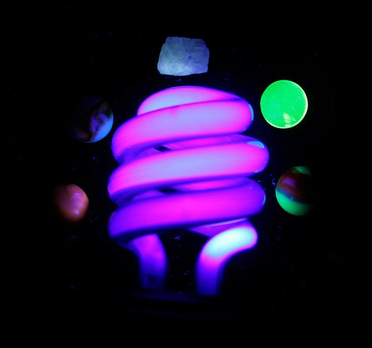 Uv Light Bulbs: UV Light / Blacklight Bulb - Perfect for standard bulb fittings.,Lighting