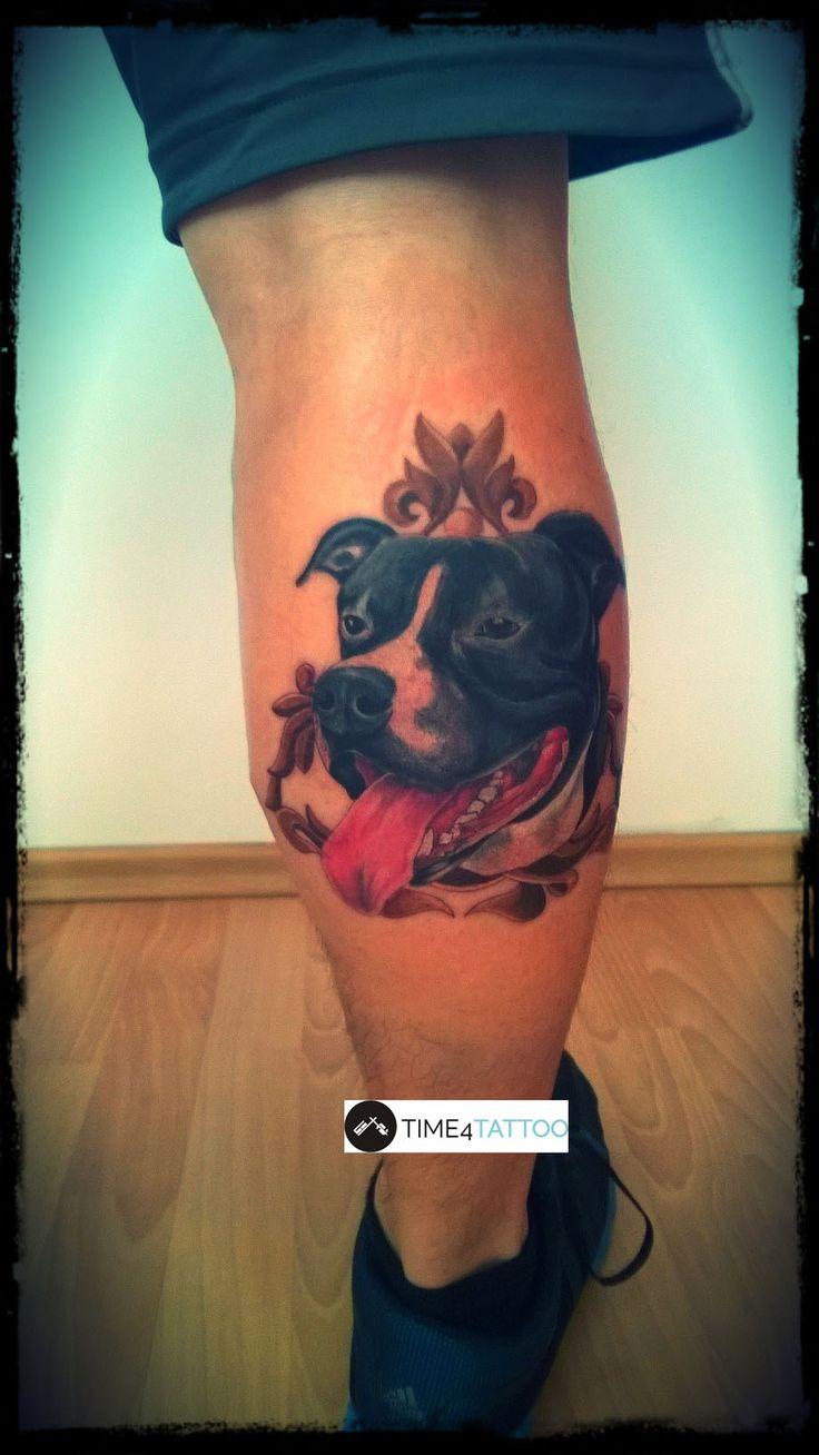 realistyczny portret psa - wykonanie TIME4TATTOO www.time4tattoo #realistycznytatuaz #tatuazpies #tatuazportret #kolorowytatuaz #realistictattoo #portraittattoo #dogportrait #dogtattoo #amstaftattoo #time4tattoo